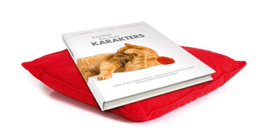 boeken_perfect_fit_karakterboek_kussen